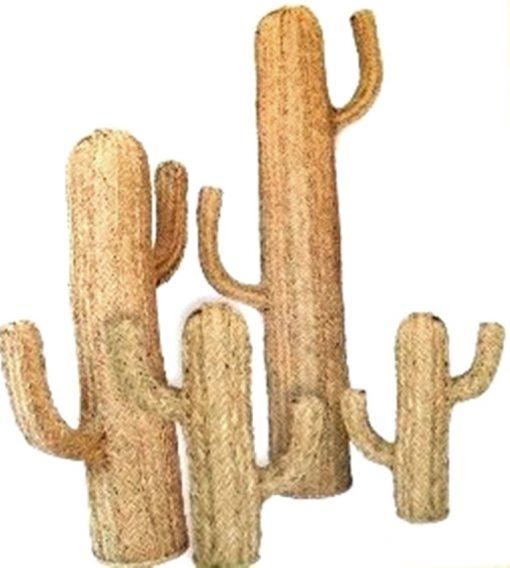 Cactus de Esparto en natural varias medidas